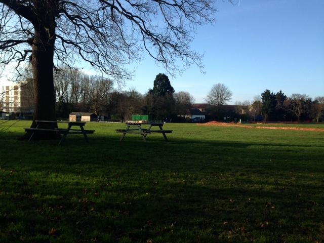 20150118 Ridgeway Park site visit 2