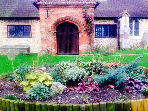 20151220 flower bed